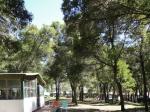 Camping LOS HORNEROS
