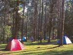 Camping y Cabañas Tannenwald - Estancia El Porvenir