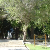 Plaza San Martín en Chos Malal