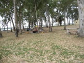 camping plaza montero