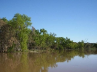Navegando por riachos frente a Santa Elena