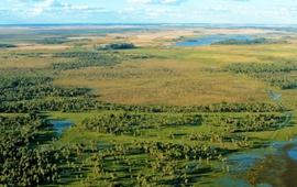 Reserva Natural Ibera