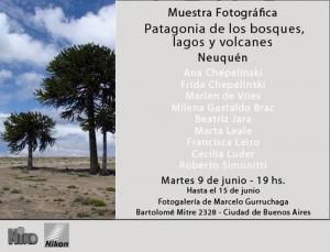 Muestra Patagonica