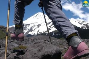 Trekking Volcán Lanin