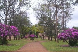 Apostoles, Provincia de Misiones