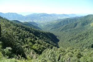 Reserva Nacional El Nogalar de los Toldos , Provincia de Salta