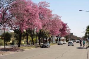 Avellaneda, Provincia de Santa Fe