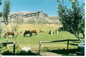 Castillos de Pincheira, Provincia de Mendoza