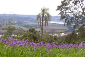 San Javier, Provincia de Misiones