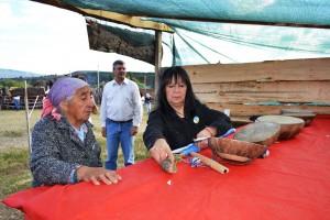 Fiesta Regional de los Instrumentos Mapuche
