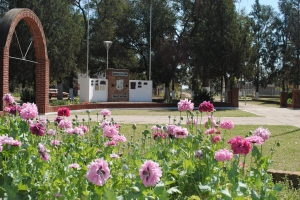 Huanqueros, Provincia de Santa Fe