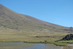 Area Natural Protegida El Tromen, Provincia de Neuquén