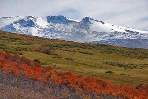 Area Natural Protegida Copahue, Provincia de Neuquén
