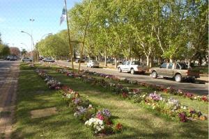 Casilda, Provincia de Santa Fe