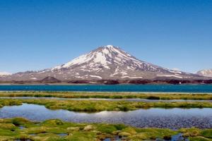 Pareditas, Provincia de Mendoza