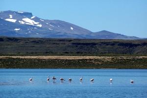 Parque Nacional Laguna Blanca, Provincia de Neuquén
