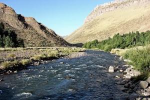 Las Loicas, Provincia de Mendoza