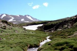 San Carlos, Provincia de Mendoza