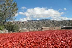 Payogasta, Provincia de Salta