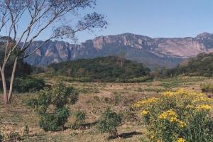 Palma Sola, Provincia de Jujuy