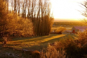 Telsen, Provincia de Chubut