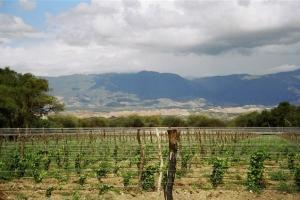 Colalao del Valle, Provincia de Tucumán