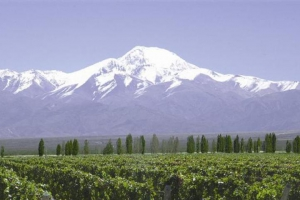 Tupungato, Provincia de Mendoza