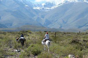 Parque Nacional Los Alisos