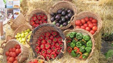 Fiesta Nacional de la Horticultura