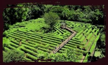 Laberinto Vegetal de Montecarlo