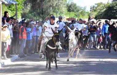 Rally de burros en Los Molinos