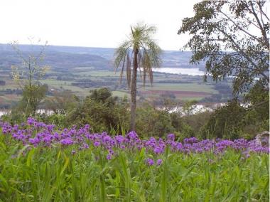 Cerro Monje. Foto de Ministerio de Turismo de Misiones