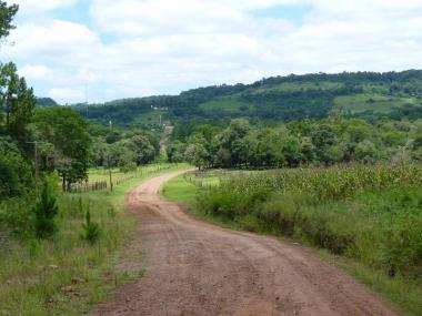 Camino en Arroyo del Medio. Foto de Juan José López