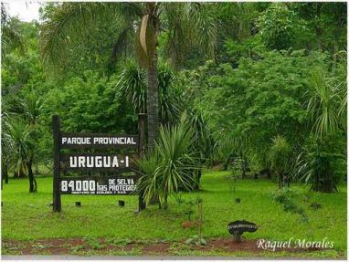 Puesto Guardaparque Uruzú. Parque Urugua-I