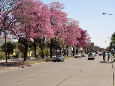 calle de Avellaneda