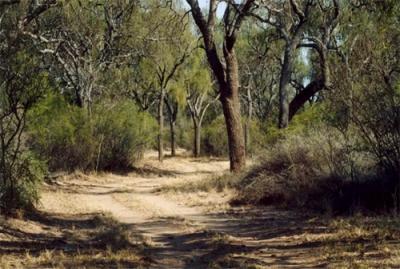 Parque Provincial Chancaní