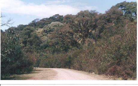 Camino al Parque Nacional El Rey