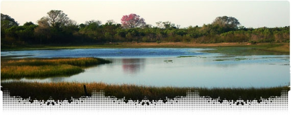 Rio de Oro Laguna