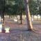 Camping Balneario Municipal de Laguna Paiva