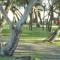 Club de Pescadores San Nicolás. Laguna Los Horcones