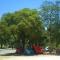 Camping del Parque de Recreación y Turismo Toma Vieja