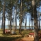 Camping Municipal Lago Urugua-í