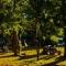 Camping Organizado El Molino