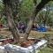 Camping Municipal de Metán