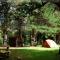 Camping Organizado El Paraíso