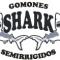 Astillero Shark