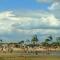 Balneario y Camping Municipal Las Palmeras