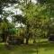 Camping El Apeo. Flor Serrana