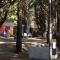 Camping Municipal de San Cayetano