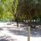 Camping El Estanque